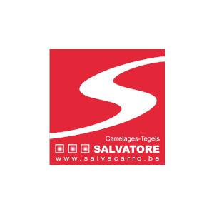 partner_salvacarro